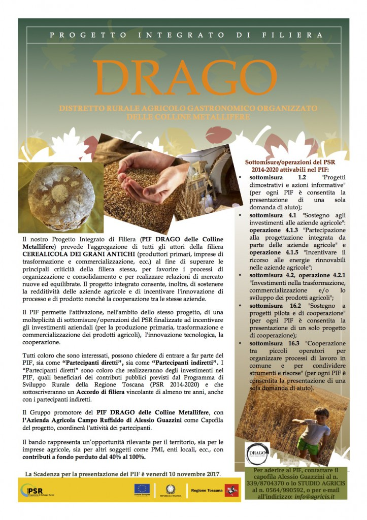 drago_volantino_eu